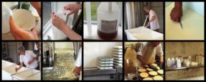 Flocculation and Cheese Making at the Cellars at Jasper Hill